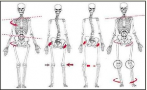 The importance of Bodyalignment…
